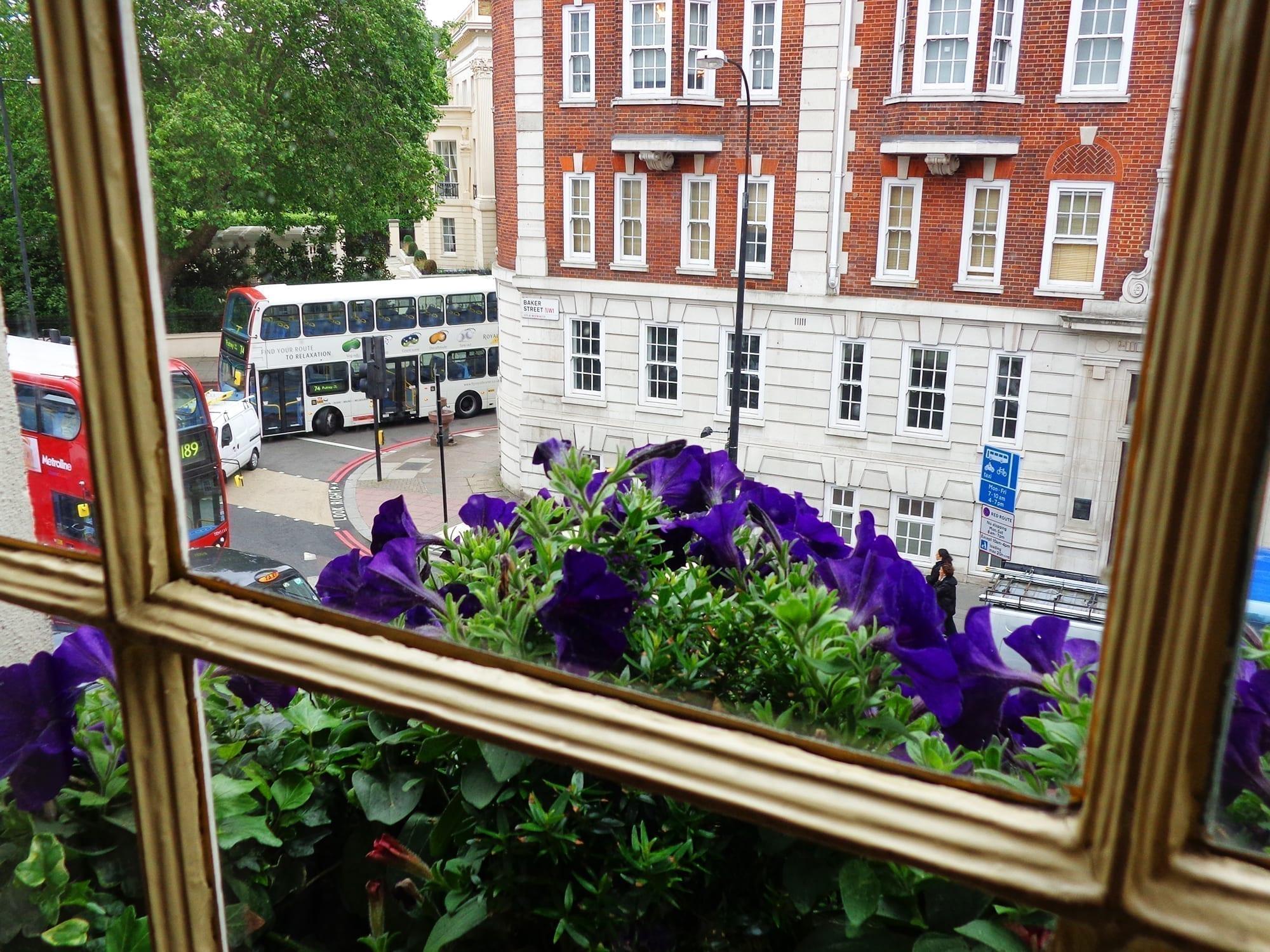 221 B Baker Street window flowers