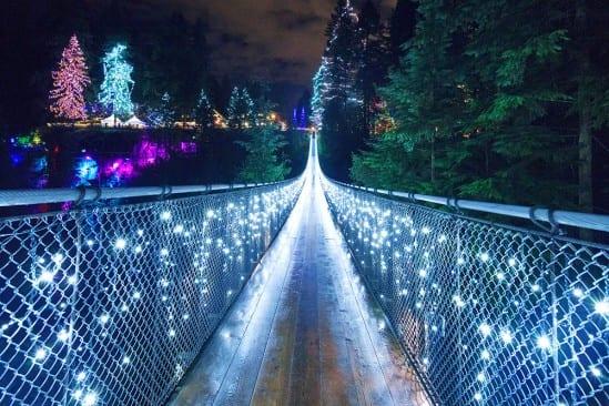 capilano suspension bridge lights