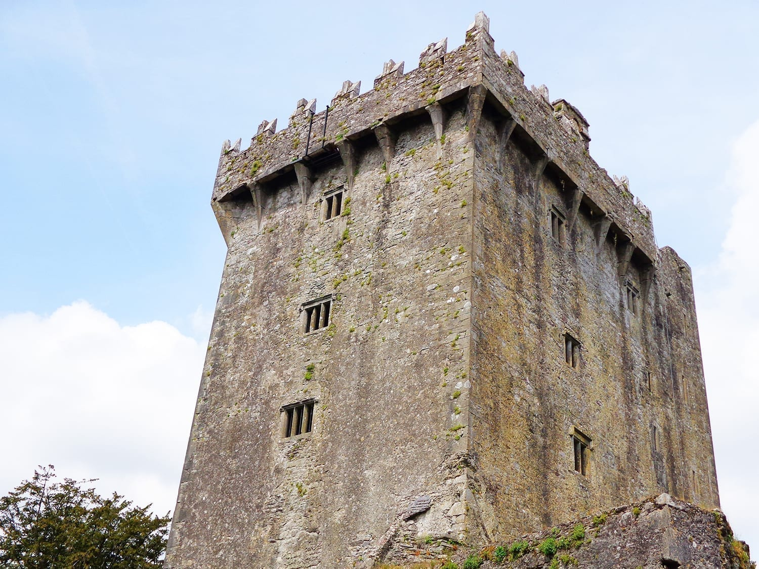 cork to blarney castle